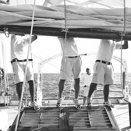 Sailors II - Foto aus The Palace Collection